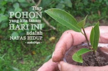 pohon1